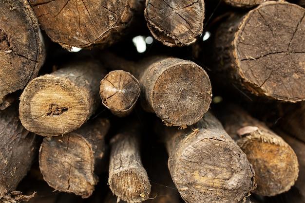 Een stapel van droog gezaagde bomen. brandhout voor de oven of open haard.