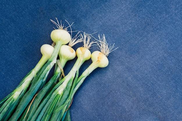 Een stelletje groene jonge verse uien op een blauwe achtergrond. sluiten. groene uien zijn rijk aan vitamines, mineralen en natuurlijke verbindingen.