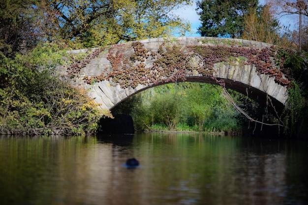 Een stenen brug, gapstow bridge, in central park, ny.