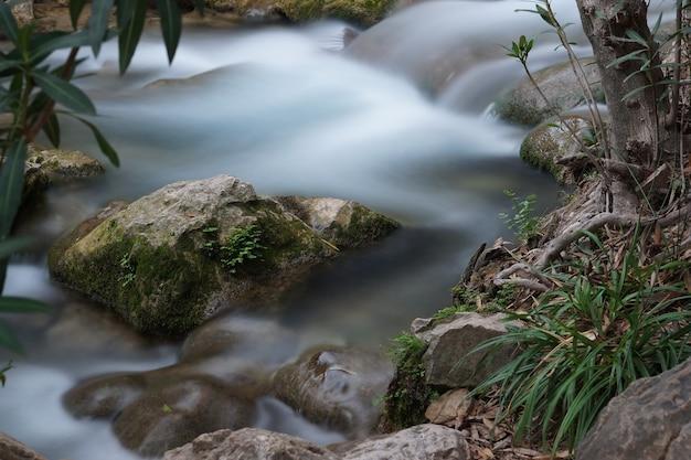 Een stroompje met stroomversnellingen en een steen met mos die uit het water steekt