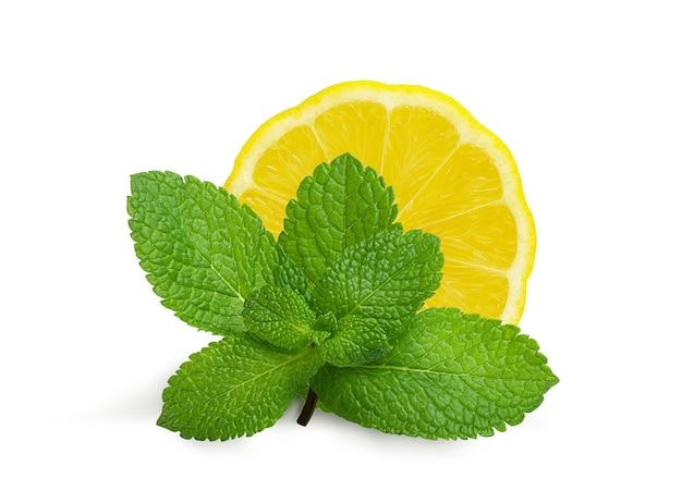 Een takje verse aromatische munt en sappige citroen op wit