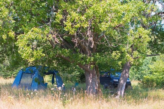 Een toeristentent in de natuur onder een boom. zomervakantie wandelen
