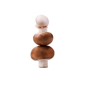 Een toren van verse bruine champignons geïsoleerd op een witte achtergrond