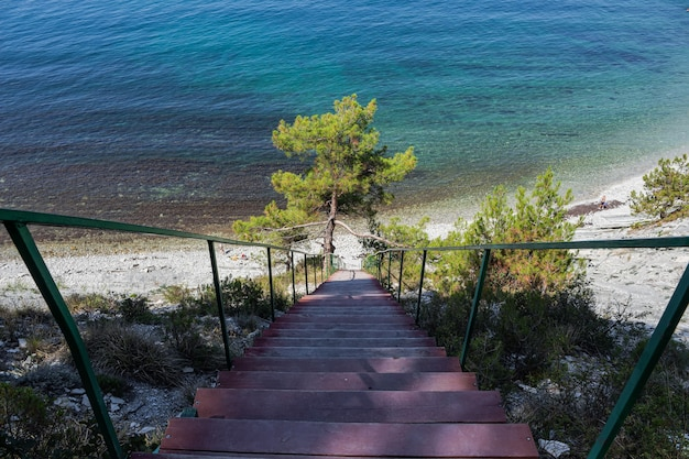 Een trap naar de zee op de rotsen leidt naar een wilde strandweg door het bos