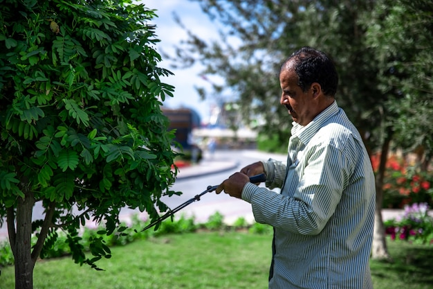 Een tuinman in de tuin snijdt de bladeren van bomen met een grote metalen schaar