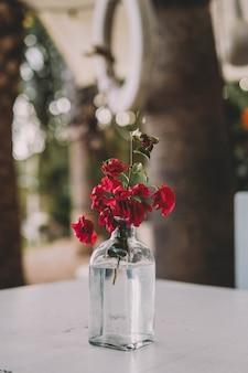 Een vaas gemaakt van een glazen fles voor een rode bloem