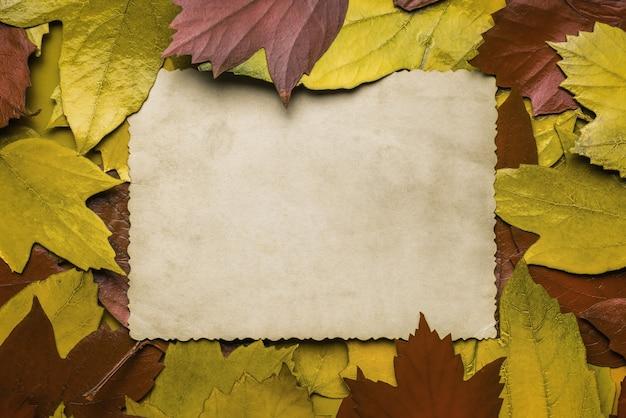 Een vel antiek papier in herfstgele en rode bladeren. ruimte voor de tekst. plat leggen.