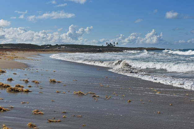 Een verlaten zandstrand. dominicaanse republiek