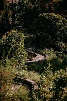 Een verticale opname van een bochtig pad in het bos