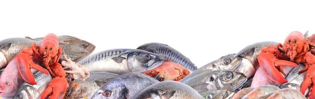 Een verzameling zeevruchten voor elke smaak