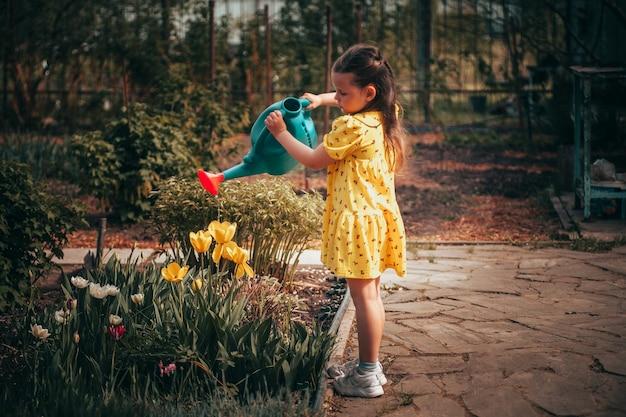 Een vijfjarig meisje in een gele jurk geeft gele tulpen water uit een gieter in de tuin in de w...
