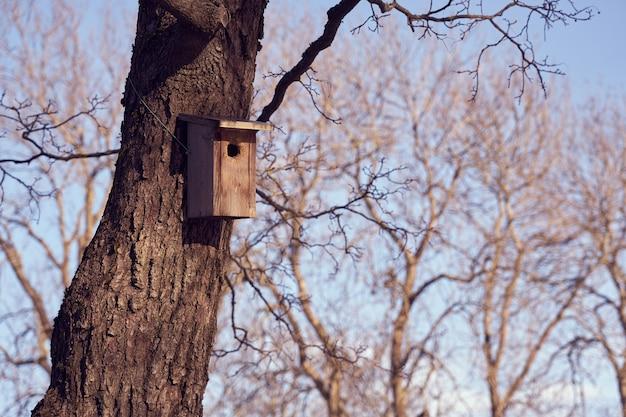 Een vogelhuisje aan een boom op een zonnige dag.