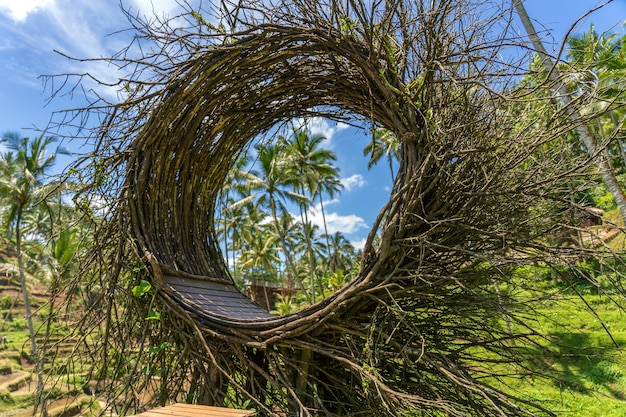 Een vogelnest recreatiegebied in de jungle in de buurt van de rijstterrassen op het eiland bali, indonesië. natuur- en reisconcept