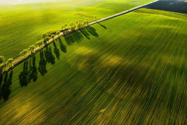 Een vogelvlucht van een groen veld en een weg in europe.nature van wit-rusland
