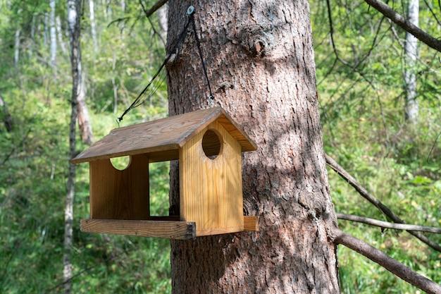Een vogelvoederhuis in een groen zomerbos maakte met je eigen handen een ladder van takken voor kleine...
