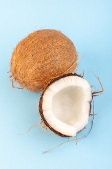 Een vooraanzicht kokosnoten gesneden en hele melkachtige frisse mellow geïsoleerd op de iced-blauw
