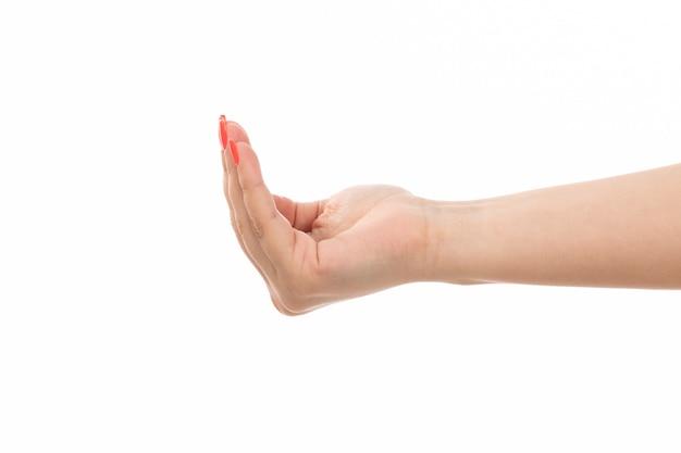 Een vooraanzicht vrouwelijke hand met gekleurde nagels open palm op de witte