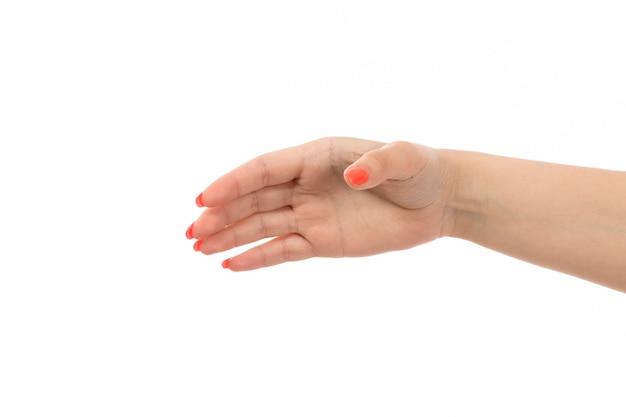 Een vooraanzicht vrouwelijke hand met gekleurde nagels opgeheven hand op het wit