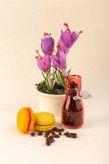 Een vooraanzichtkruik met koffie franse macarons en paarse plant op het roze oppervlak