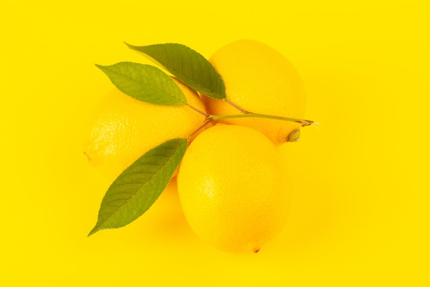 Een voorzijde sloot omhoog gele verse citroenen verse rijp met groene bladeren die op de gele achtergrond worden geïsoleerd