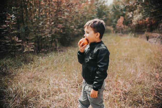 Een vrolijke jongen in het herfstbos eet een appel eerste klasser