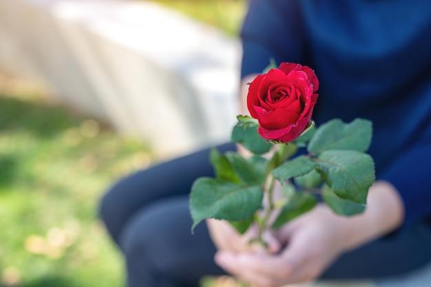 Een vrouw die een rood roze bloem geeft aan haar vriendje op valentijnsdag met groene natuur achtergrond