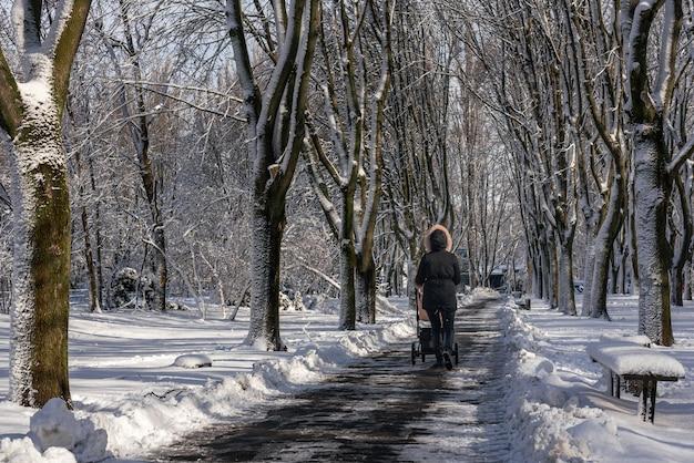 Een vrouw met een kinderwagen loopt langs een besneeuwd steegje van een stadspark. niet-geïdentificeerde vrouw met haar rug naar de kijker in de verte in een jasje met een capuchon. sneeuw bos steegje.