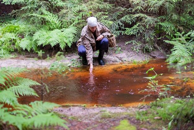Een vrouw met een mand paddestoelen in het bos. voor elk doel.
