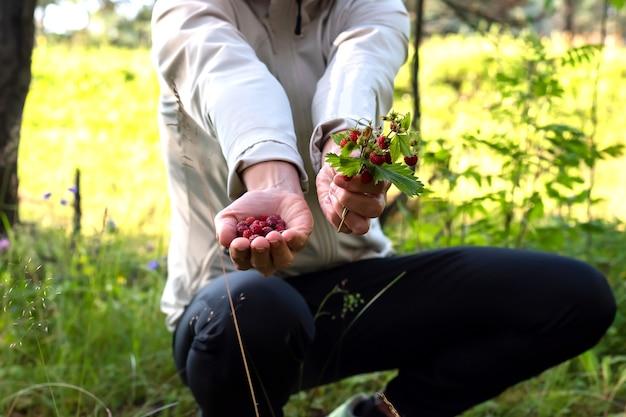 Een vrouw met een mand paddestoelen in het bos. voor welk doel dan ook.