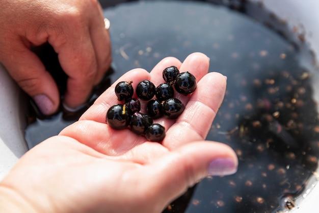 Een vrouw wast zwarte bessen. detailopname.