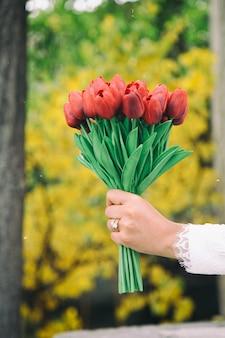 Een vrouwenhand die een boeket van rode tulpen houdt.