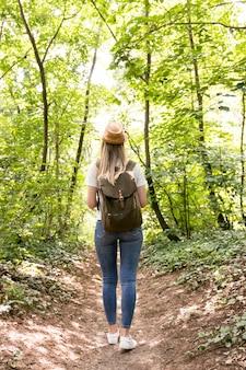 Een wandeling in het bos van achteren