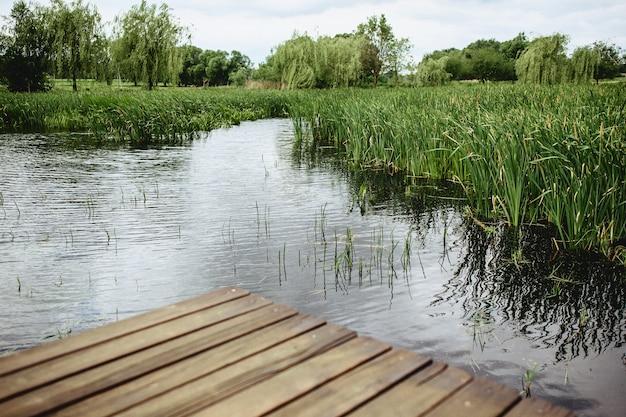 Een weergave van een riet en een blauw meer van een brug