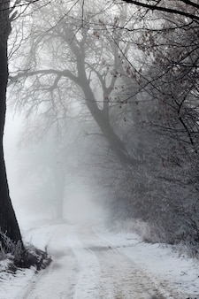 Een weg bedekt met sneeuw in de winter