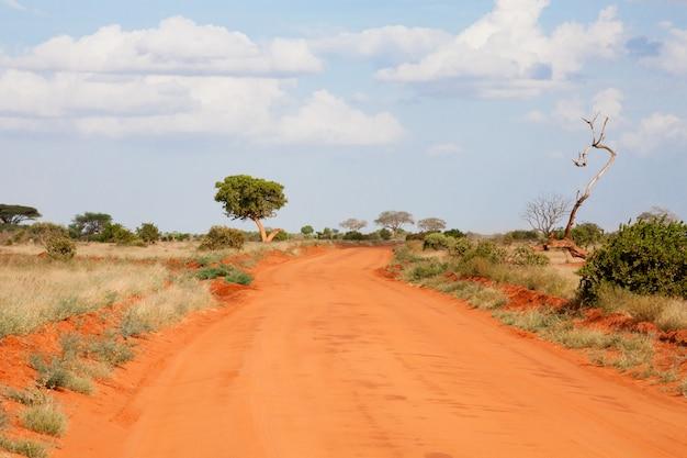 Een weg door de savanne met veel planten
