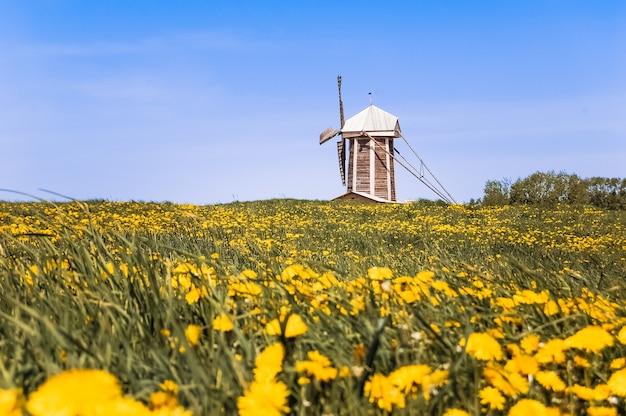 Een windmolen in de zomer veld.