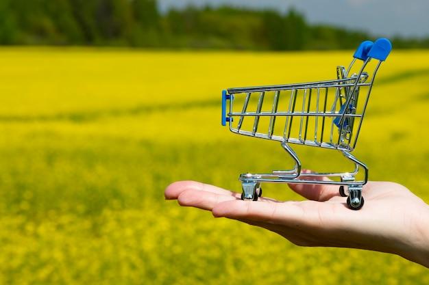Een winkelwagentje staat in de palm van de hand tegen de muur van een fel bloeiend koolzaadveld. ruimte kopiëren.