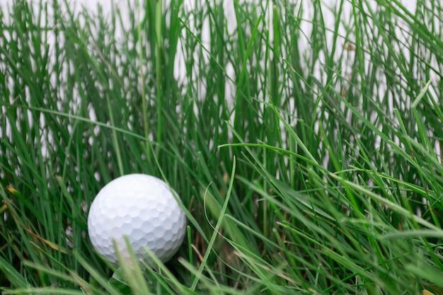 Een witte golfbal in het groene gras om te golfen