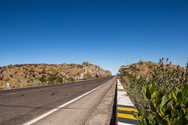 Een woestijnweg omringd door heuvels met exotische planten