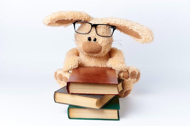Een zacht stuk speelgoed konijn in glazen zit met een stapel boeken.