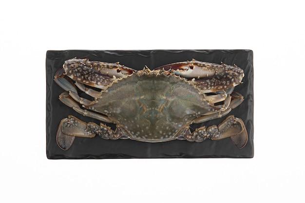 Een zeer verse biologische krab wordt op een zwart bord gelegd