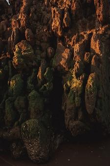 Een zeestructuur van zee-rotsen met veel schelpdieren en zee-eikels op het strand