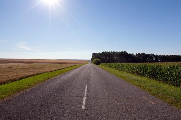 Een zomers landschap met een asfaltweg op een zonnige middag