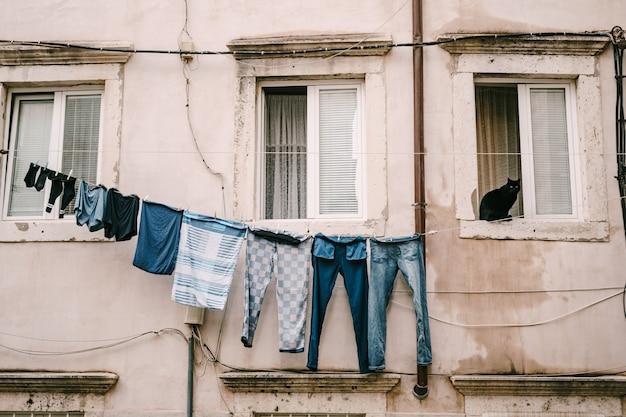 Een zwarte kat zit in een raam, kleren worden gedroogd aan een waslijn tussen de ramen