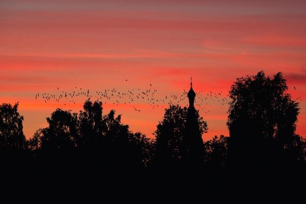 Een zwerm vogels tegen de achtergrond van een kerk en een rode zonsondergang. een mystiek concept