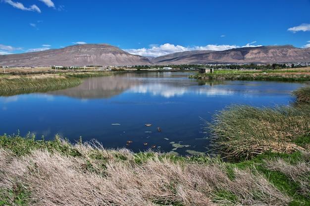 Eenden op laguna nimez reserva in el calafate in patagonië van argentinië