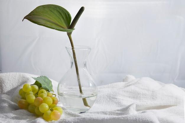 Eenvoudig en mooi stilleven met spathiphyllumbloem en transparante stenen