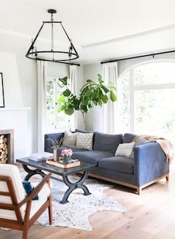 Eenvoudig woonkamer interieur