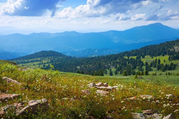 Eenvoudige bergenlandschap