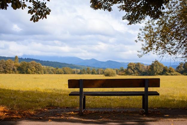 Eenzaam bankje onder de boom met schilderachtig uitzicht op de vallei en de bergen aan de horizon
